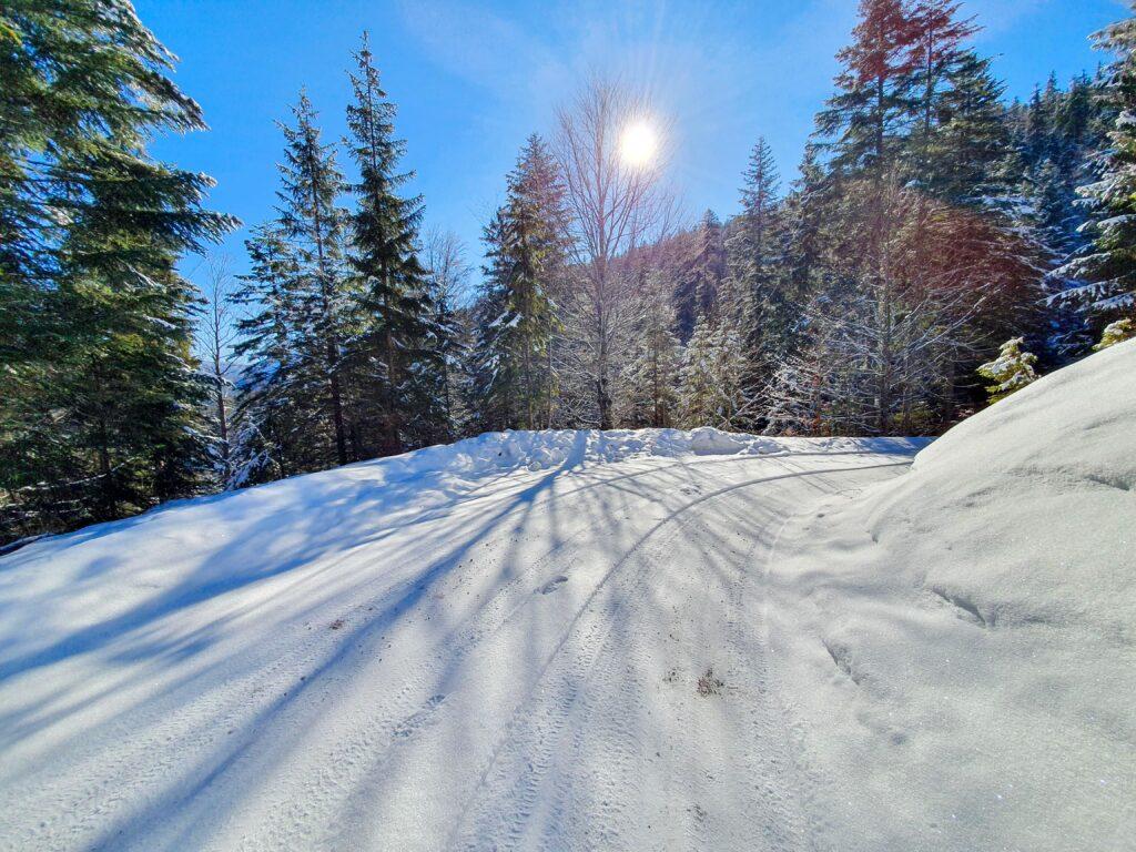 Schneeweg Sonne