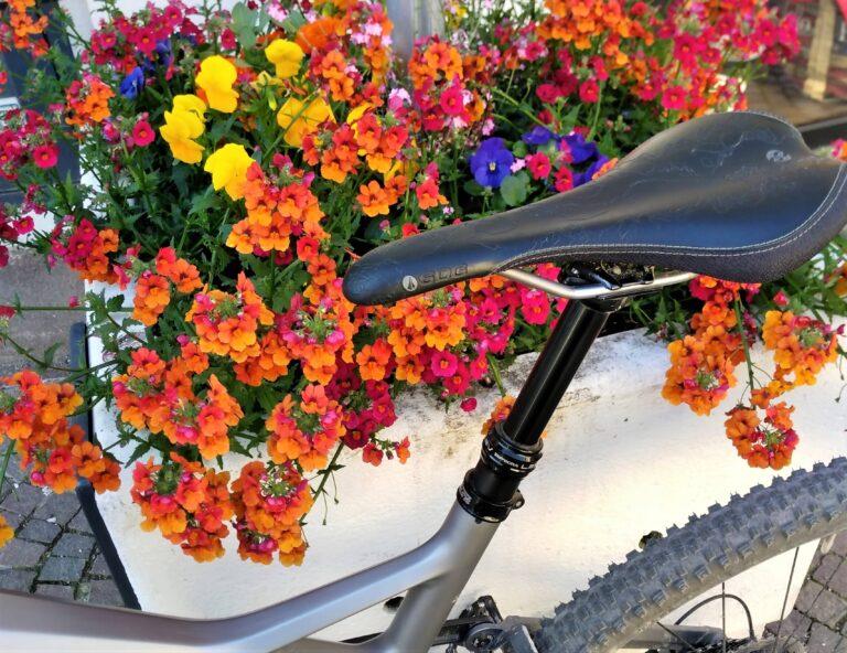 Rad und Blumen
