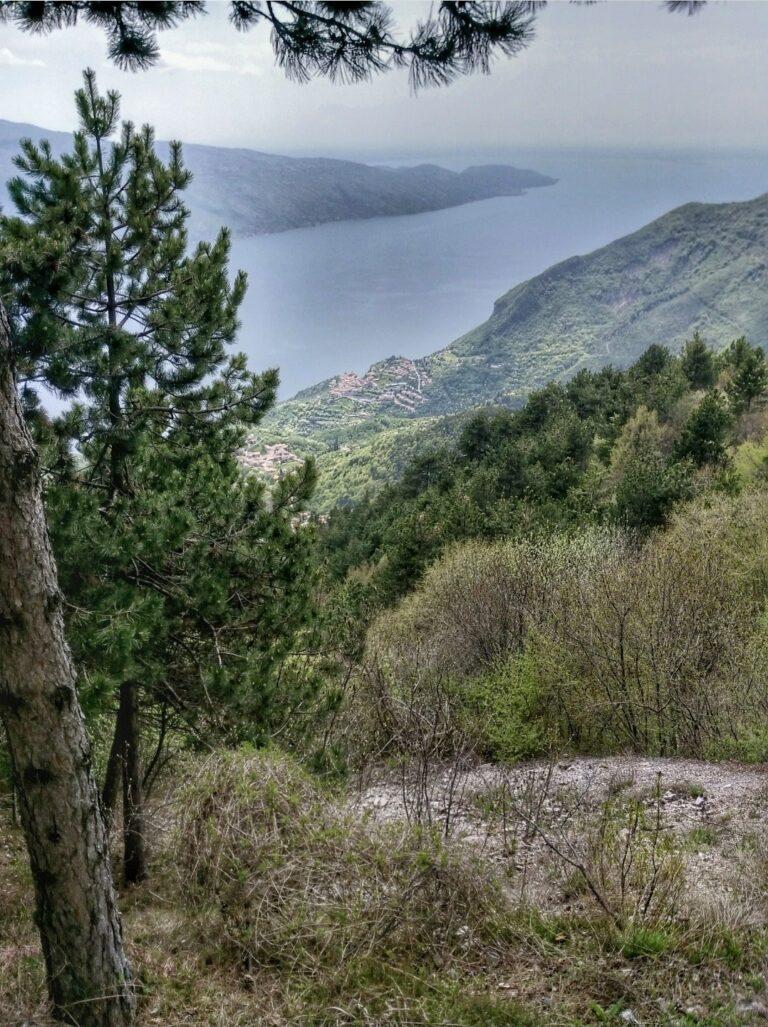 Trails mit Seeblick